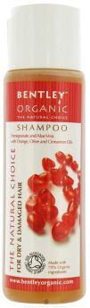 Bentley Organic Shampoo Frequent Use 250ml x12