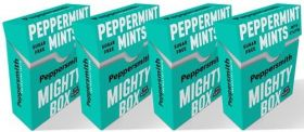 Peppersmith Xylitol English Spearmint (Sugar Free) Chewing Gum 15g x12