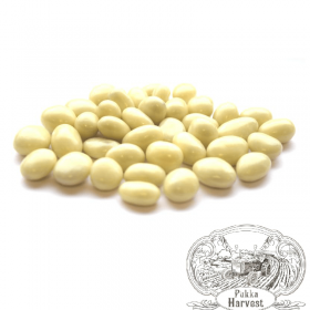 Pukka Harvest Yoghurt coated raisins 125g x5